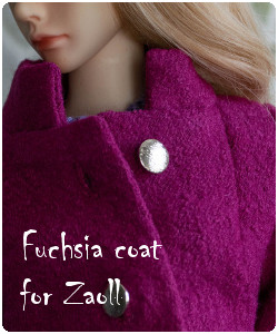 Coat for Zaoll